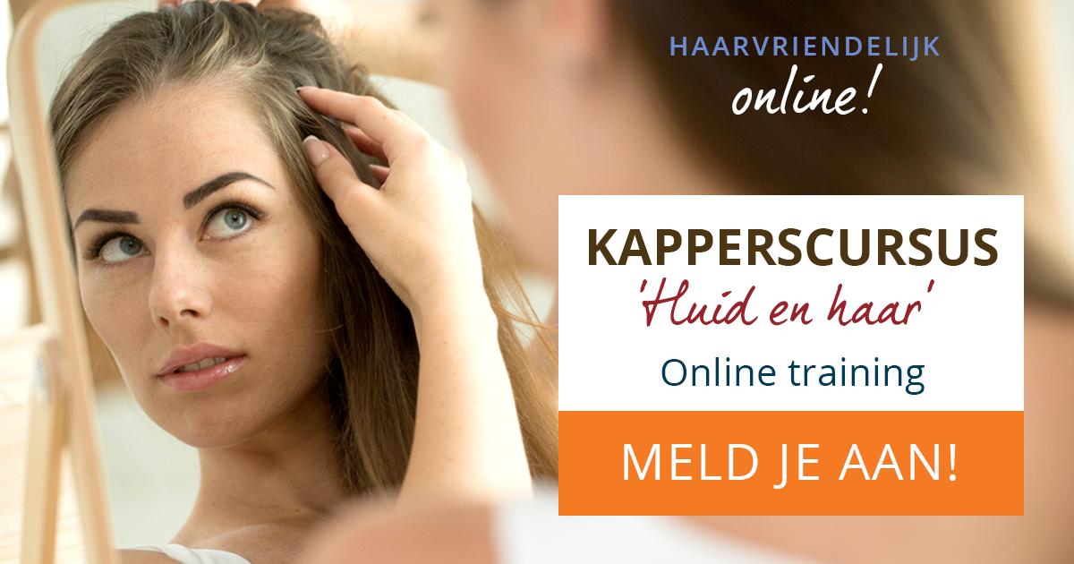 Banner online Kapperscursus 'Huid en haar'